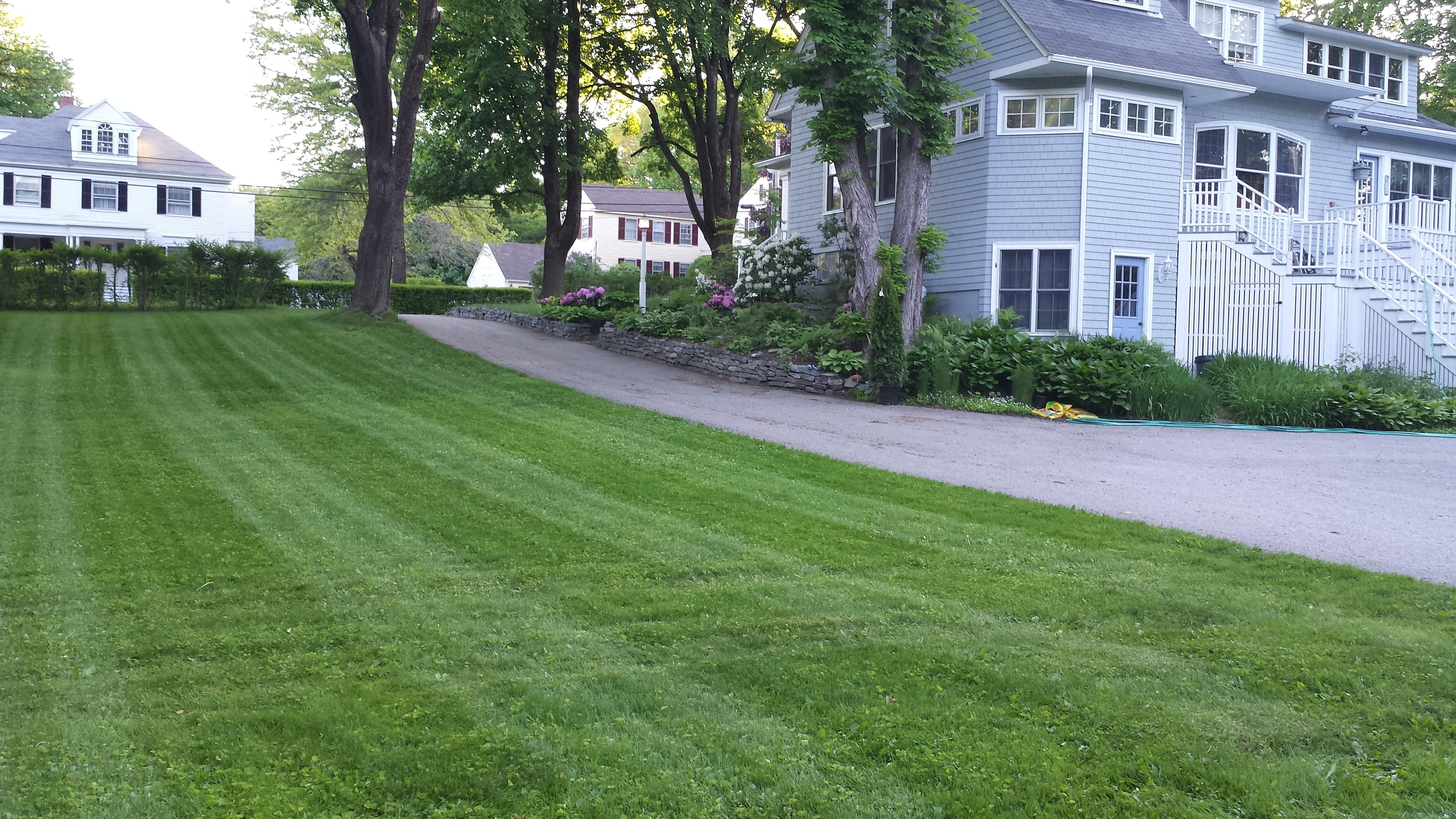 Judy's Lawn