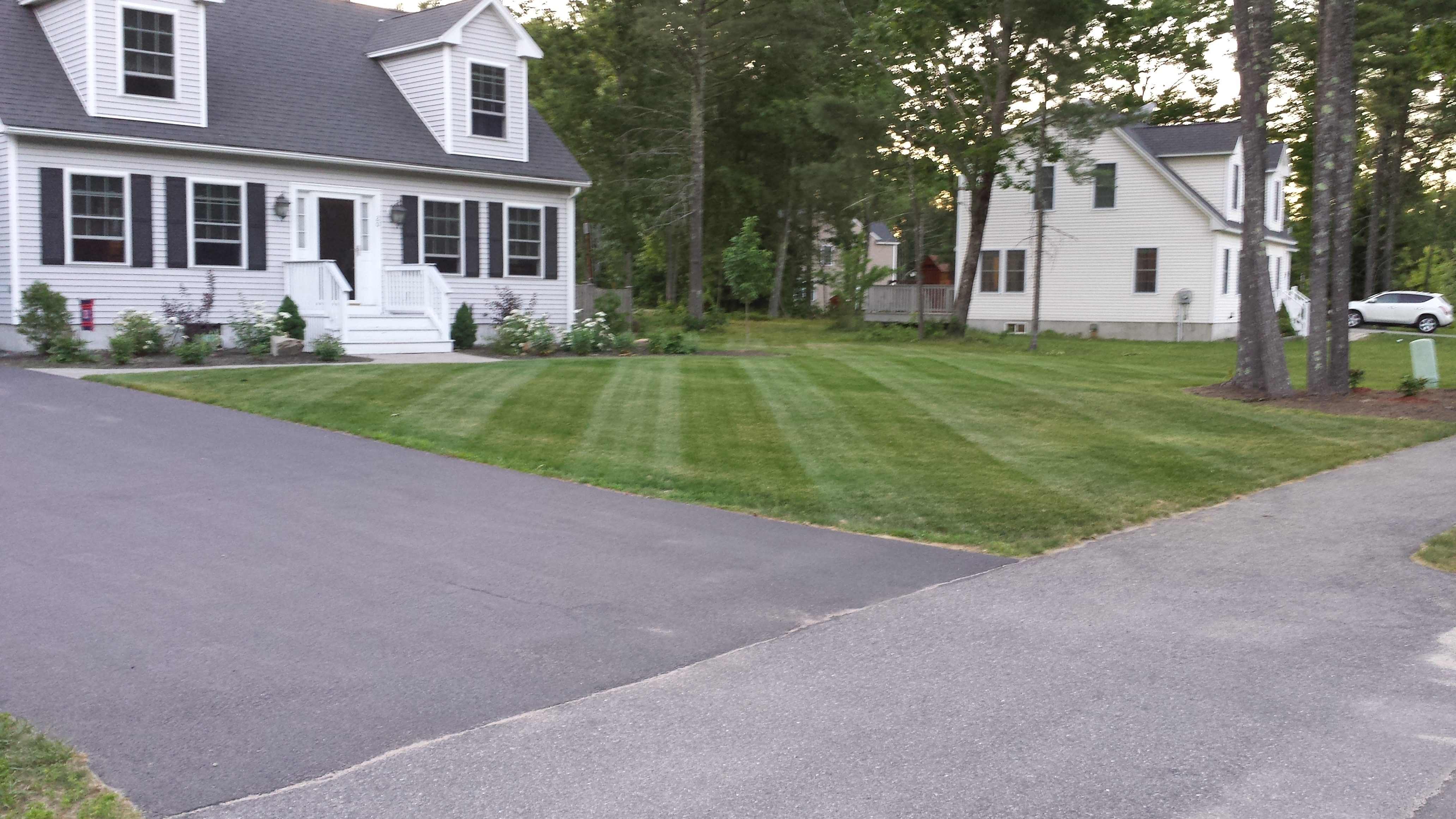Ray's Lawn